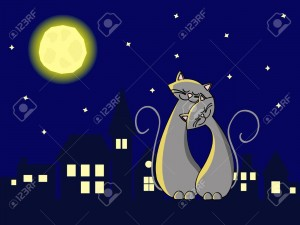 9932900-two-grey-cats-in-love-sitting-at-the-roof-at-night-Stock-Vector